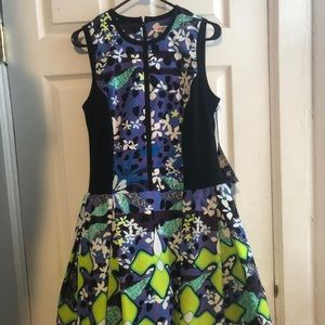 Dress from Peter Pilotto x Target Line